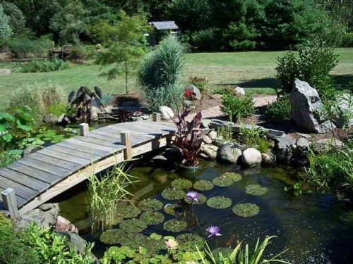 Beautiful Home Garden Setting with Fishpond