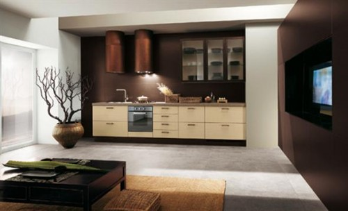 Elegant Ethnic Brown Interior
