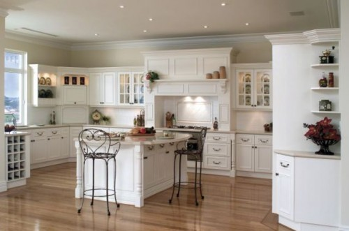 Great Kitchen Design for 2011 Type